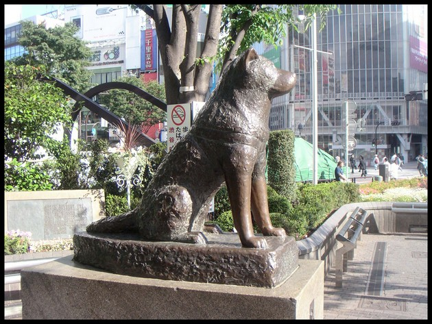 hachiko-statue