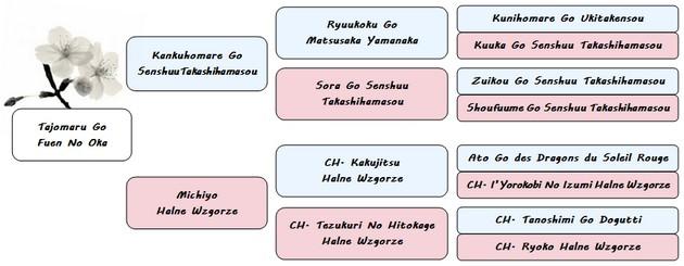 pedigree Tajomaru