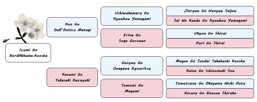 pedigree izumi